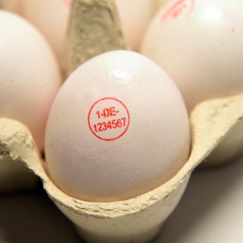 Eierstempel - Packstellennummer auf Ei